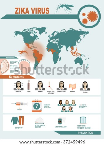 Zika virus symptoms infographics with figures and text - stock vector